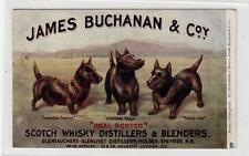 JAMES BUCHANAN & Co SCOTCH WHISKY DISTILLERS: Advertising postcard (C30551)