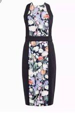 Ted Baker Kensington Print Dress