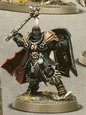 Warhammer Age of Sigmar - Chaos - Slaves to Darkness - Chaos Warrior 3