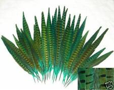 12 dyed GREEN pheasant tail feathers, 12-14 inches