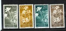 FIORI - FIORI SPANISH GUINEA 1956