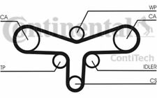 CONTITECH Kit de distribución VOLKSWAGEN PASSAT AUDI A4 A6 SKODA SUPERB CT920K2