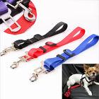 Adjustable Pet Dog Harnesses Seat Belt Lead Restraint Strap Car Safety NEW