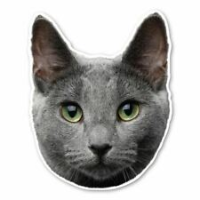 Russian Blue Cat Magnet