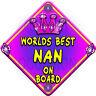 NEW Pink & Purple  WORLDS BEST NAN JEWEL  Novelty Baby on Board Car Window Sign