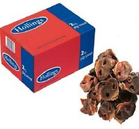 PIG SNOUTS - (100g - 2kg) - Hollings Dog Pork Food Treats bp Chews PawMits Noses