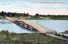 Photo 1909 Winnipeg Canada Pontoon Bridge in River Park