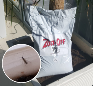 Sciarid Fly CONTROL ZOOT OFF for Indoors, Greenhouses and House plants