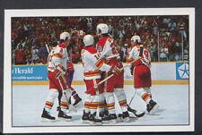 Panini 1989-1990 NHL Ice Hockey Sticker No 17