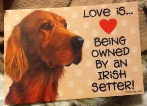 Irish Setter Love Laminated Picture Sign / magnet
