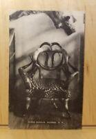A4) Postcard  MORSE MUSEUM WARREN NH Chair horn wild animal