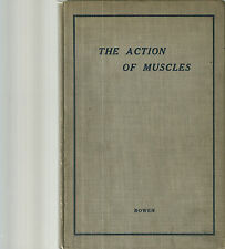 The Action of Muscles in Bodily Movement and Posture Wilbur P. Bowen 1912