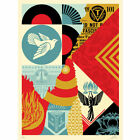 Shepard Fairey's The Future is Unwritten Collage 2021