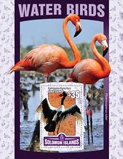 Solomon Islands 2016 MNH Water Birds 1v S/S Storks Flamingos Stamps