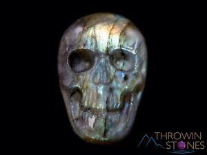 LABRADORITE Crystal Cabochon Skull, Carving, Jewelry Making, Memento Mori, E1572