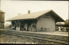 RPPC NY Breesport  LVRR Railroad Depot Station  Chemung County