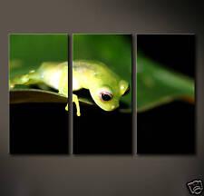THE FROG Leinwand Bilder Bild neugieriger Frosch Abstraktes Grafik Druck Deko
