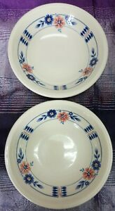 VINTAGE STAFFORDHIRE BILTONS STYLE BOWLS MADE IN ENGLAND BLUE APRICOT FLORAL
