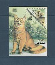 Togo bloc   faune  chat       de 1999   num:  328E  oblitéré