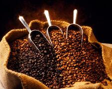 2 lbs Kenya AA Karundul Coffee Beans Finest Auction Lot Light Roast, Top Grade
