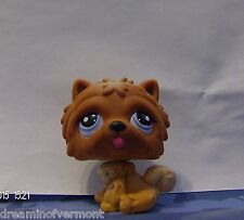 Littlest Pet Shop Brown Chocolate Puppy Chow w/Purple Eyes # 1831 New Loose