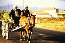 #8 35mm slide - Vintage - Collectibles -Photo - old people buggy horse wheels