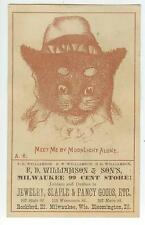 c1880s F D Williamson Milwaukee 99 Cent Store Wisconsin Illinois - dressed cat