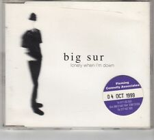 (HE845) Big Sur, Lonely When I'm Down - 1999 CD