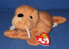 RARE TUCK TAG - TY TUSK the WALRUS  BEANIE BABY - MINT with MINT TAGS
