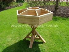Hexagon Herbs Wooden Planter