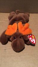 Chocolate Moose Beanie Baby Rare Errors
