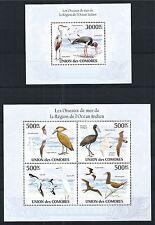COMORES KOMOREN 2010 MINI SHEET BLOCK SET BIRDS VOGEL INDIAN OCEAN **