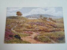 A R QUINTON Postcard 2025 WHITE WELLS, ILKLEY     Unposted  §A2881