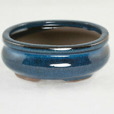 "Oval Mame Shohin Bonsai / Cactus & Succulent Pot 5""x 4""x 2"" - Dark Blue Glazed"