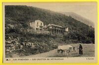 cpa Les Pyrénées 65 -  Entrée des GROTTES de BETHARRAM Café Attelage de Boeufs