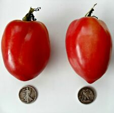 Japanese Oxheart - Organic Heirloom Tomato Seeds - Premier Oxheart - 40 Seeds