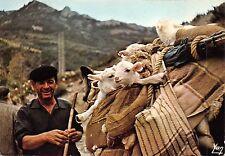 BF557 transhumance en aragon sheep goat spain