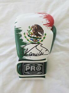 Canelo Alvarez signed Mexico Boxing Glove WBO World Champion Mexico *PROOF GGG