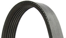 Saab 9-5 (1998-2001) Drive Belt (for 4 cylinder, without air conditioning)