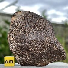More details for wholestone complete meteorite space rock north africa mtr614 ✔100%genuine
