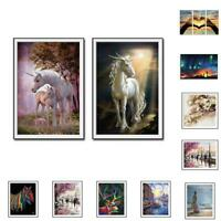 Colorful Animals Abstract Framed Oil Painting By Numbers DIY Painting Home. H2S1
