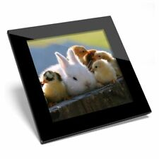 Glass Coaster  - Baby Bunny Rabbit and Chicks  #44195