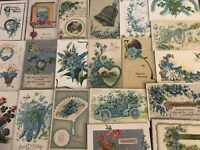 Pretty~Lot of~25~FORGET-ME-NOTS~FLOWERS~Greeting~Postcards-in Sleeves-s-571