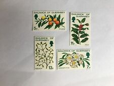 GUERNSEY SET MNH 1978 SG 173-6 CHRISTMAS ROSE HOLLY MISTLETOE SOLANUM FLOWERS
