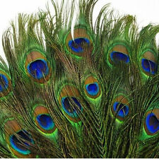US 100pcs Real Natural Peacock Tail Eyes Feathers 10-12 Inches /about 23-30cm