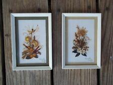 Vintage Framed Matted Pair Stella Turner Dried Australian Wild Flowers Signed