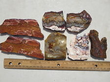 727  NICE 1# ASSORTMENT OF  SLABS FROM AN OLD, CLOSED ROCK SHOP.  GREAT FOR CABS