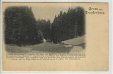 AK Radosno, Freudenburg b. Lomnitz, Schlesien, 1900