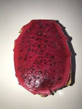 Red Dragon Fruit 70 X Seeds Hylocereus Pitaya Seeds Organic From Queensland