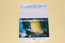 Vintage journal Beneath the waves. Underwater photography with Nikonos V camera.
